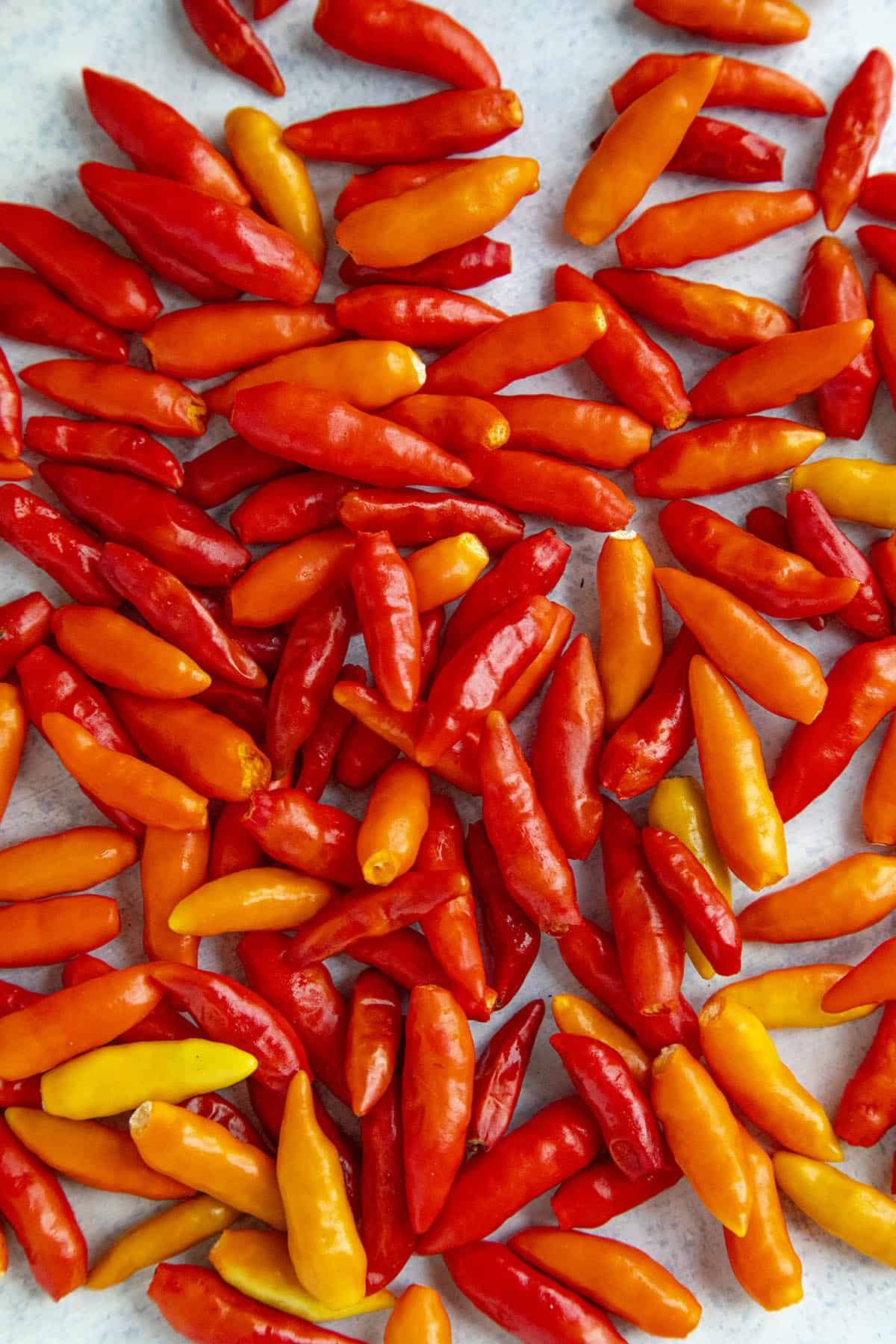 Tabasco Peppers: All About Them