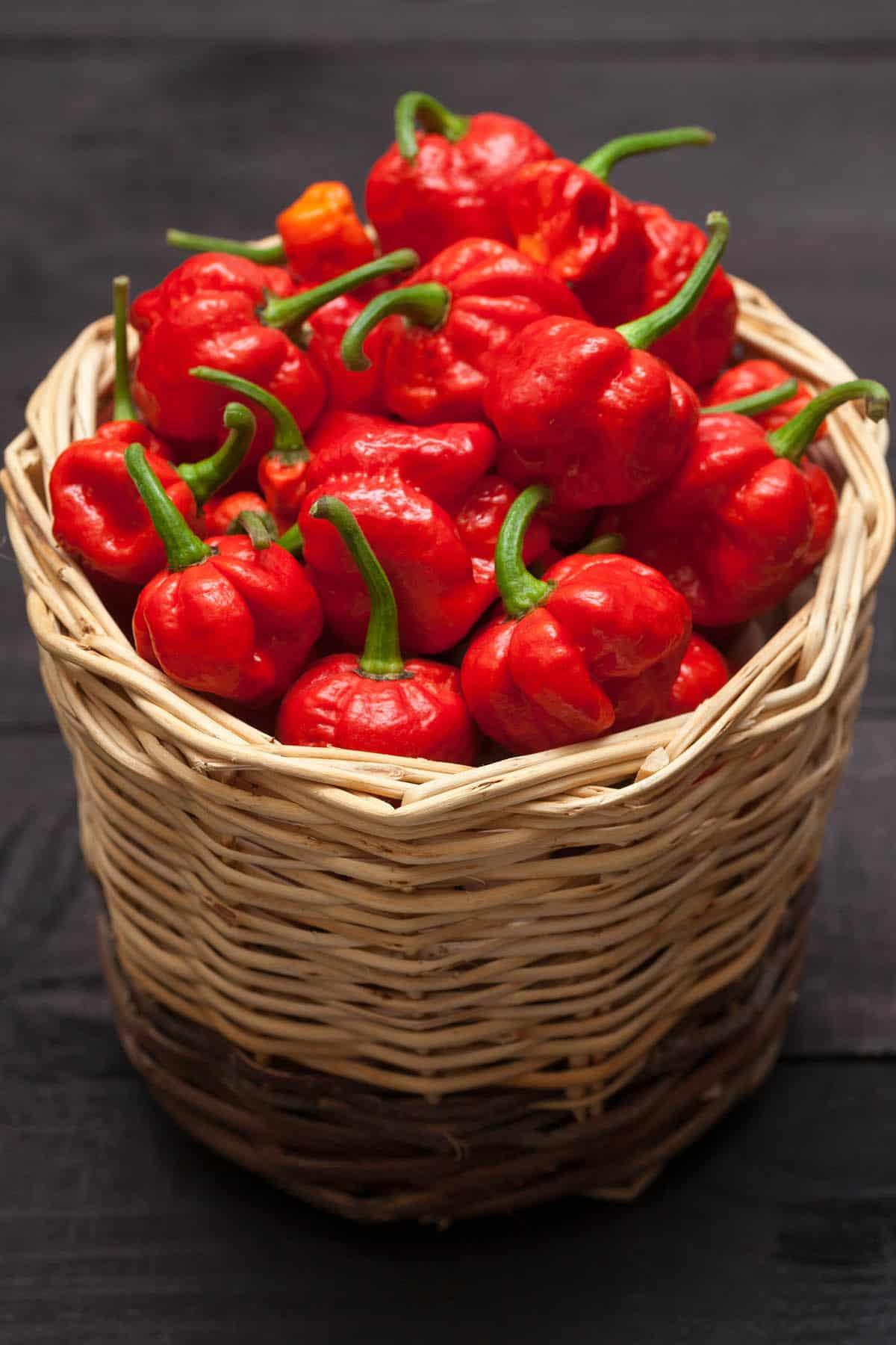7-Pot Chili Pepper