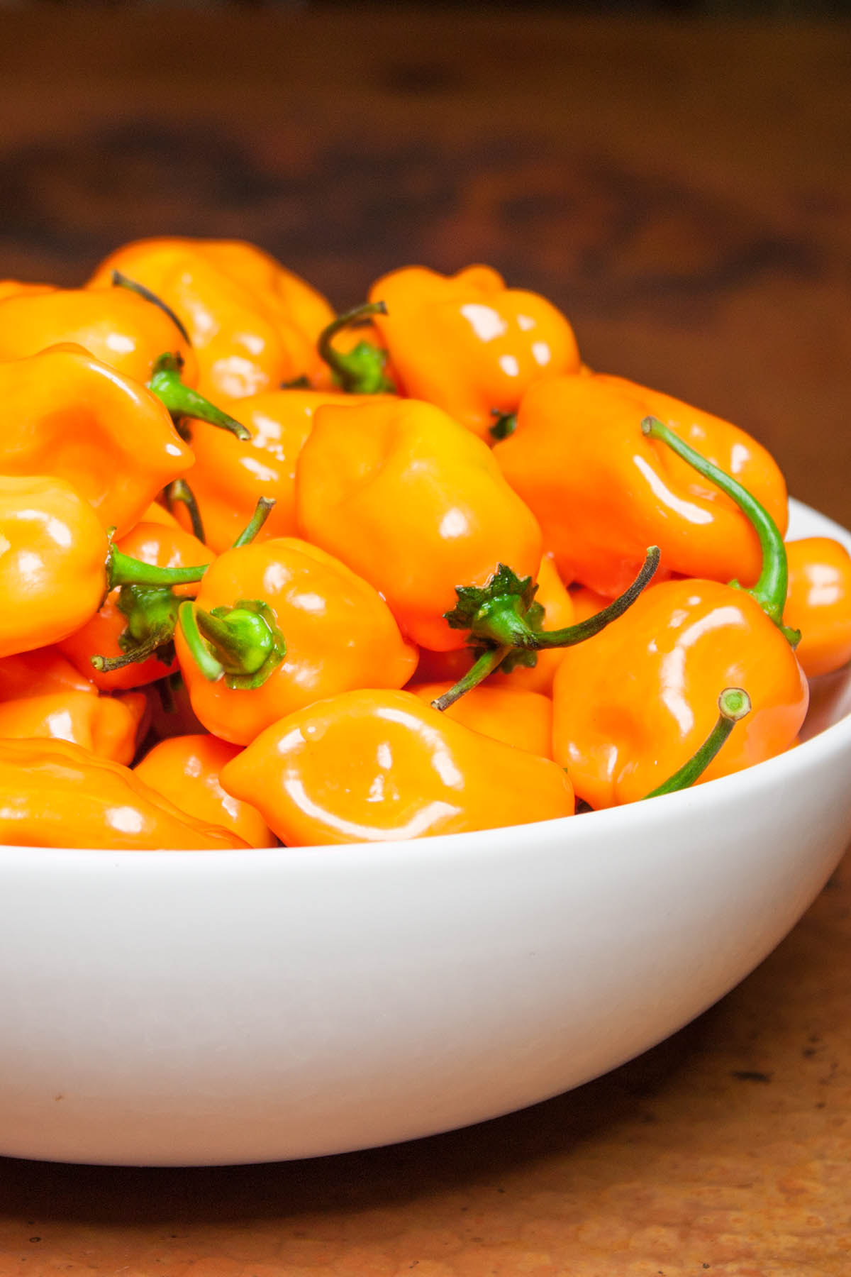 Habanero Pepper – Great Heat and Flavor