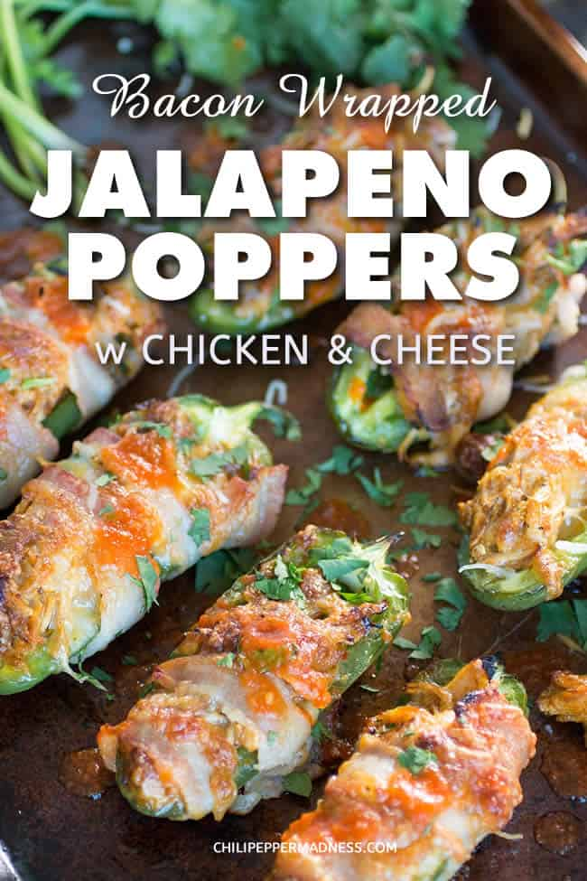 Bacon Wrapped Jalapeno Poppers with Shredded Chicken and Cheese - Jalapeno peppers sliced and stuffed with shredded chicken and cheese, then wrapped in bacon and broiled or grilled to crispy perfection. The ideal party appetizer. Here is the recipe. | ChiliPepperMadness.com #JalapenoPoppers #Poppers #Appetizers #PartyFood #PartyFoodIdeas