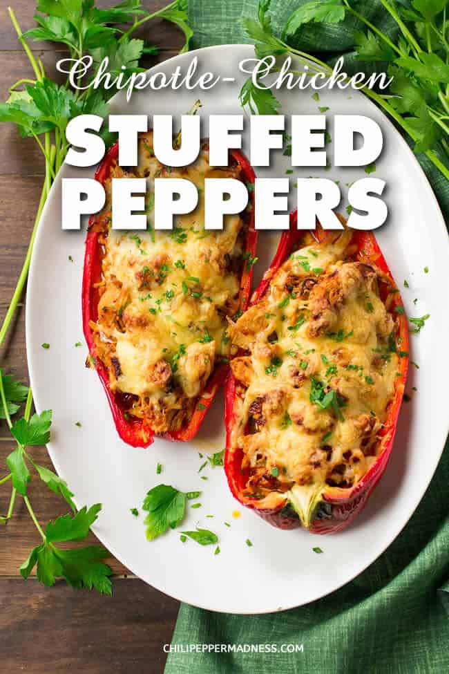 Chipotle Chicken Stuffed Peppers - A recipe for large chili peppers sliced in half, stuffed with a slow cooked shredded chicken with chipotles in adobo sauce, then topped with cheese and baked to perfection. It's time for dinner! | ChiliPepperMadness.com #StuffedPeppers #Dinner #SpicyFood
