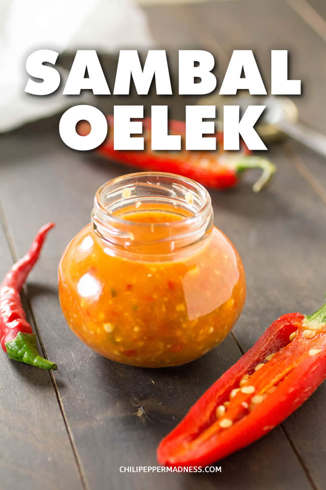 Sambal Oelek - A recipe for homemade Sambal Oelek, the classic chili paste used for cooking, made with a variety of ground chili peppers, vinegar and salt. It is ideal for seasoning noodle dishes and enhancing the flavors of sauces. | ChiliPepperMadness.com #HotSauce #Sambal #Spicy