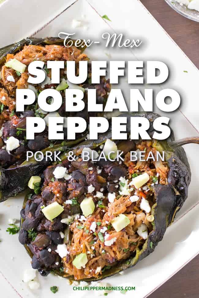Tex-Mex Chipotle Pork and Black Bean Stuffed Poblano Peppers - A recipe for mild poblano peppers, roasted and peeled, then stuffed with seasoned pulled pork, black beans and chipotle peppers in adobo, topped with cheese and avocado. Bring on the stuffed peppers! | ChiliPepperMadness.com #TexMex #StuffedPeppers #StuffedPoblanos #SpicyFood #Dinner