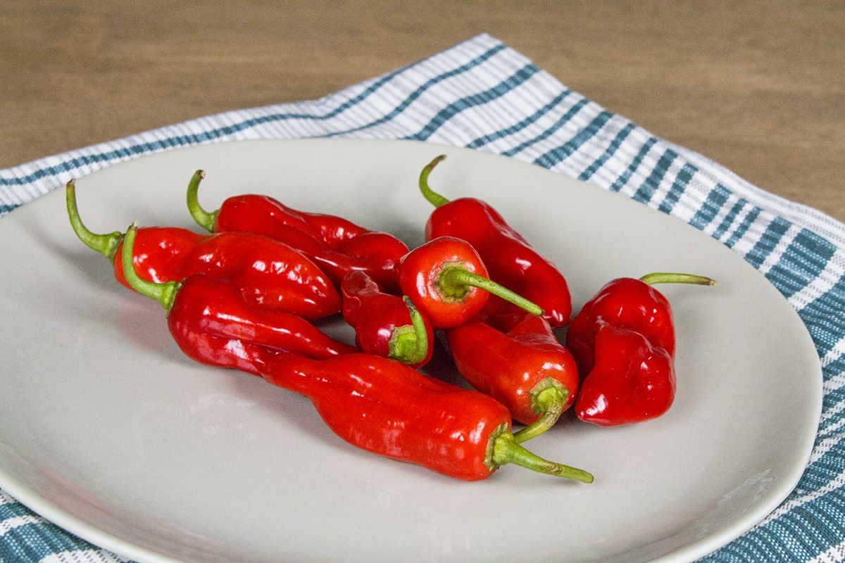 Piment de Bresse Chili Pepper