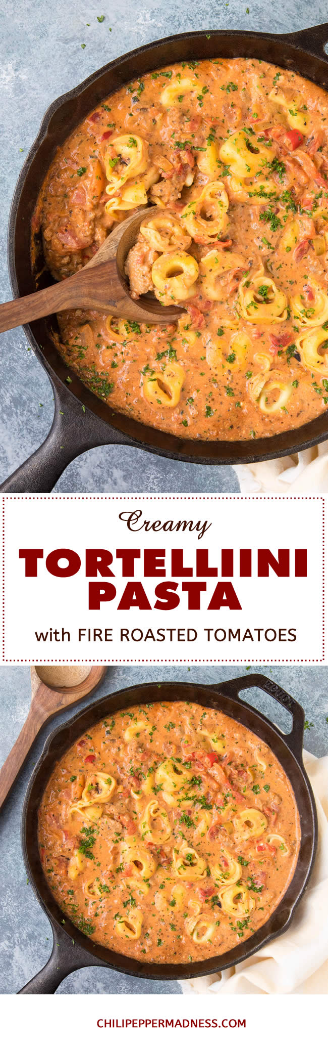 Creamy Tortellini Pasta with Fire Roasted Tomatoes - Recipe | ChiliPepperMadness.com #pasta #tortellini #EasyMeals #Dinner #SpicyFood