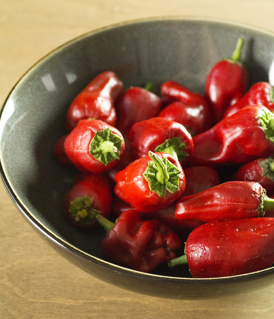 Gorgeous Paprika Chili Peppers