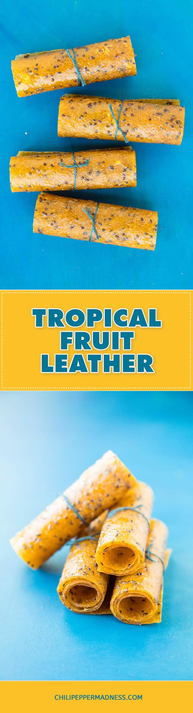Tropical Fruit Leather/Fruit Rollups - Recipe | ChiliPepperMadness.com #homemadesnacks #homemadecandy #dehydrator #snacks