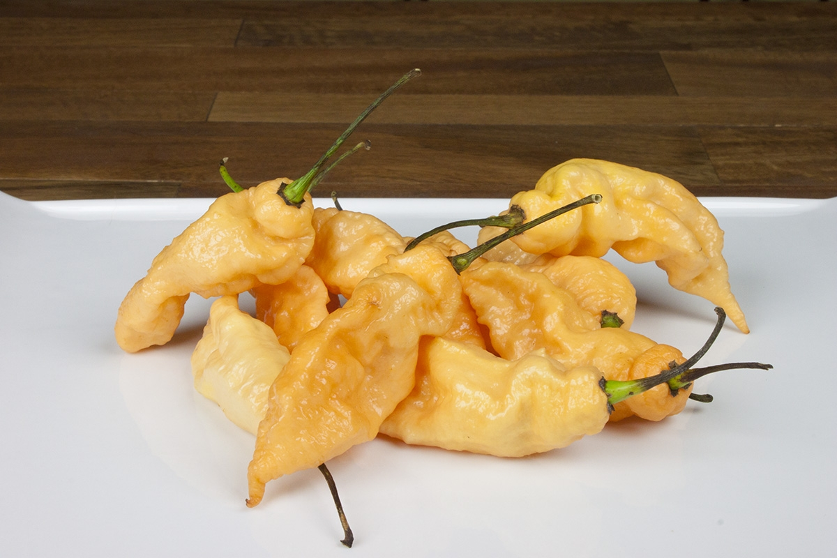 10 Tips for Cooking with Super Hot Chili Peppers