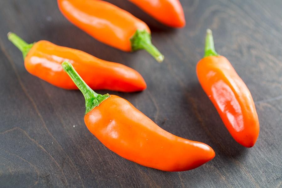 Tangerine Dream Chili Pepper