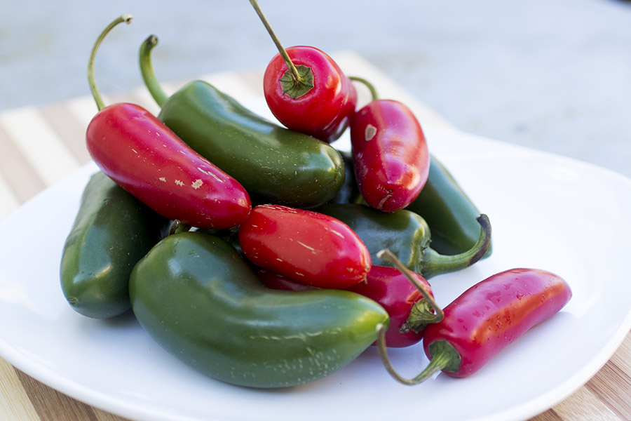 Gorgeous Red and Green Jalapeno Peppers for My Roasted Jalapeno Pepper Sauce