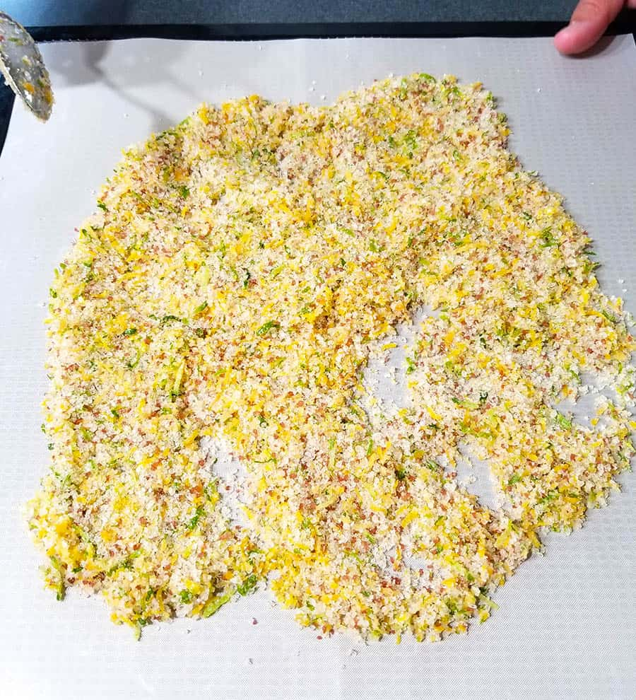Drying the Citrus Lemon and Lime Salt in a dehydrator