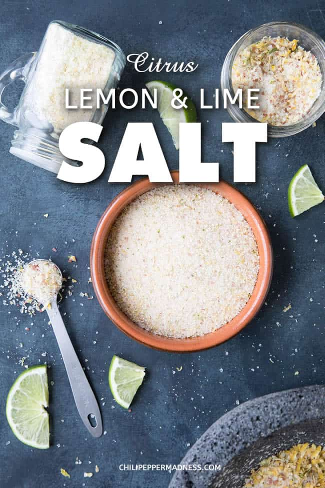 Citrus Lemon and Lime Salt - Make your own citrus salt at home with a mixture of sea salt and both lemon and lime zest, using either dried zest or fresh zest that can be dried in a dehydrator or oven. Here is the recipe. #Citrus #Salt #Dehydrator #LemonSalt #LimeSalt