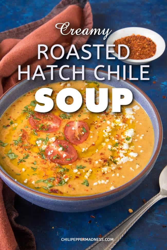 Creamy Roasted Hatch Chile Soup - This soup is silky smooth and creamy and hugely flavorful, made primarily with roasted red Hatch chile peppers and the perfect balance of seasonings. It is both rich and light and ready to make you happy. #HatchPeppers #Hatch #HatchChiles #Soup #Dinner #Appetizer