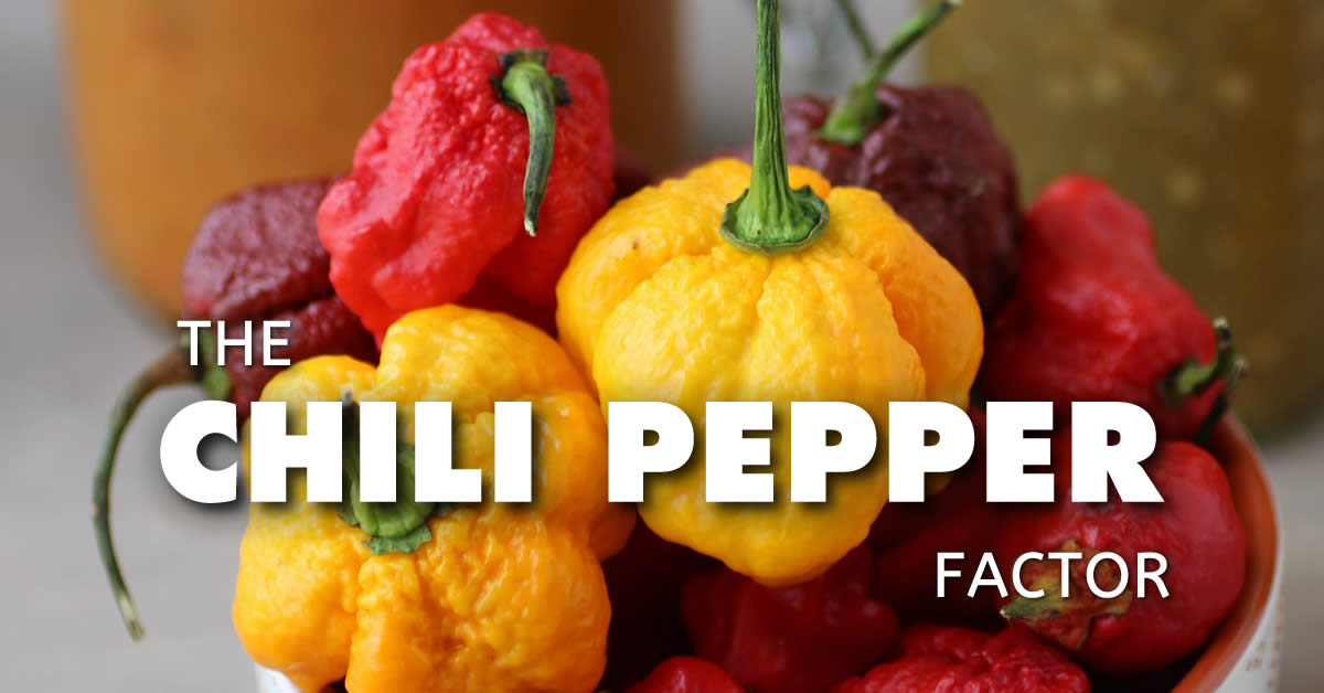 The Chili Pepper Factor