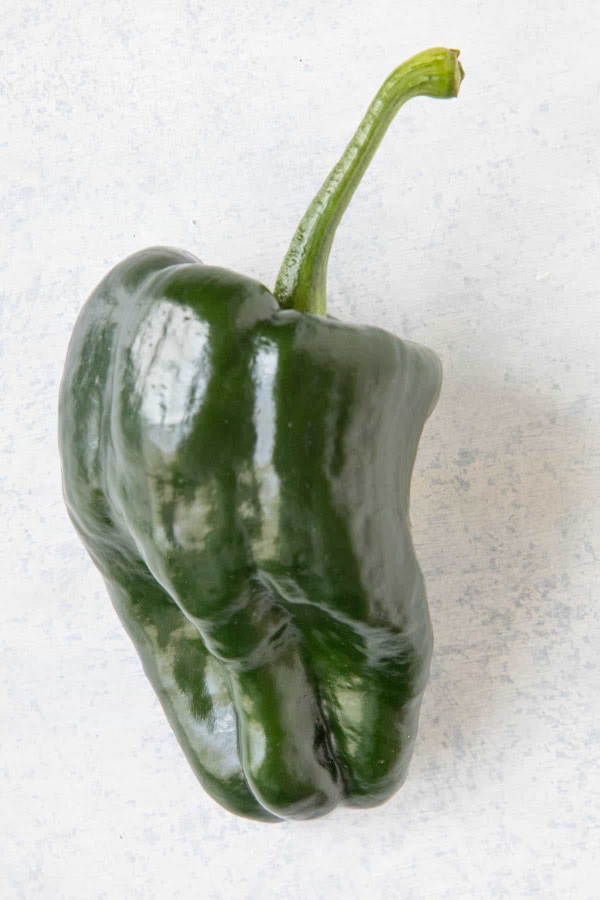 TiburonHybrid Chili Pepper - Poblano Type