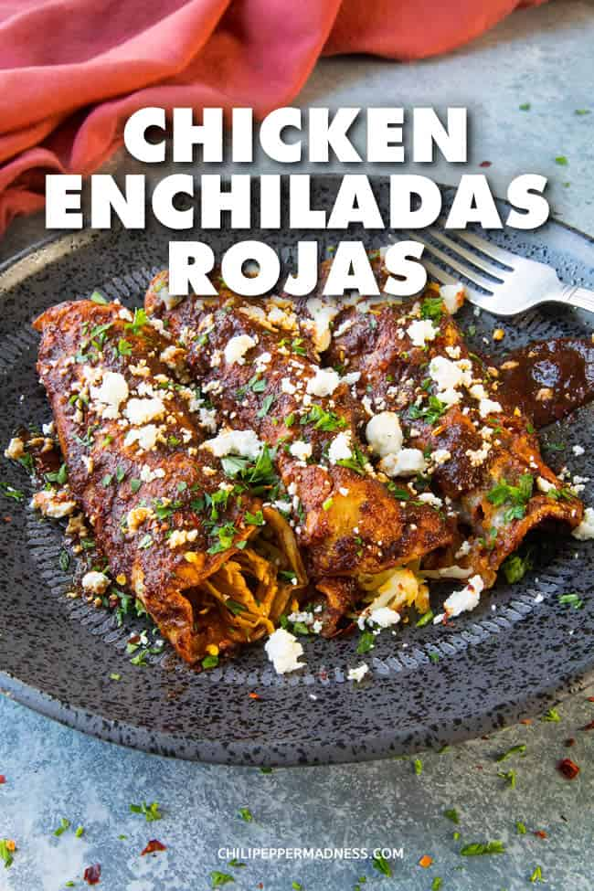 Chicken Enchiladas Rojas - A recipe for authentic chicken enchiladas rojas, made with juicy shredded chicken wrapped in corn tortillas, lots of cheese, and smothered in a hugely flavorful homemade red enchilada sauce, topped with crumbled cheese. This is the best I\'ve ever had. #MexicanCuisine #MexicanFood #CincodeMayo #Enchiladas #Dinner #Spicy