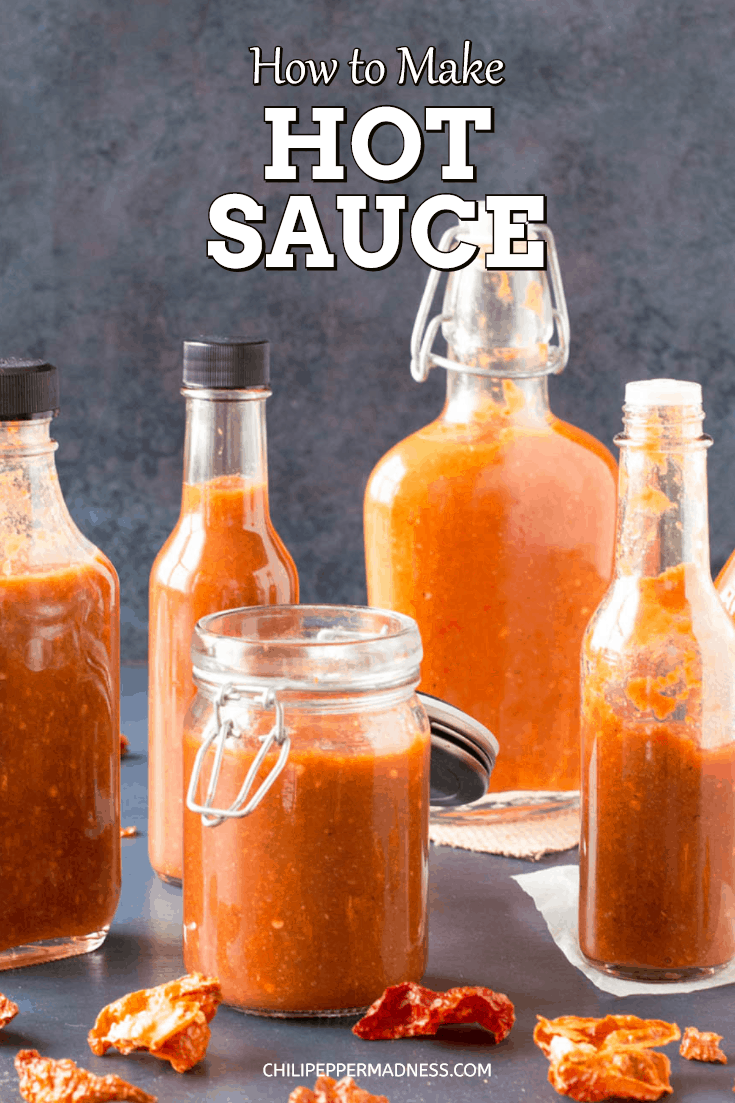 How to Make Hot Sauce - The Ultimate Guide - This guide will teach you how to make hot sauce of different types, including many recipes and tips, fermenting information, preserving hot sauce, and how to start a hot sauce business. #HotSauce #Spicy #MakingHotSauce