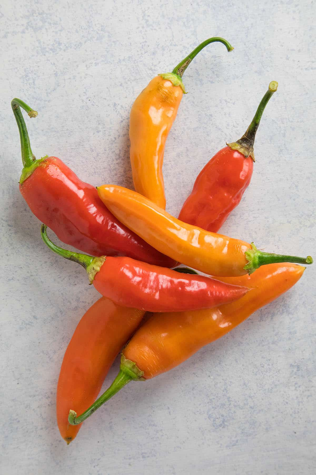 A collection of Aji Amarillo Chili Peppers