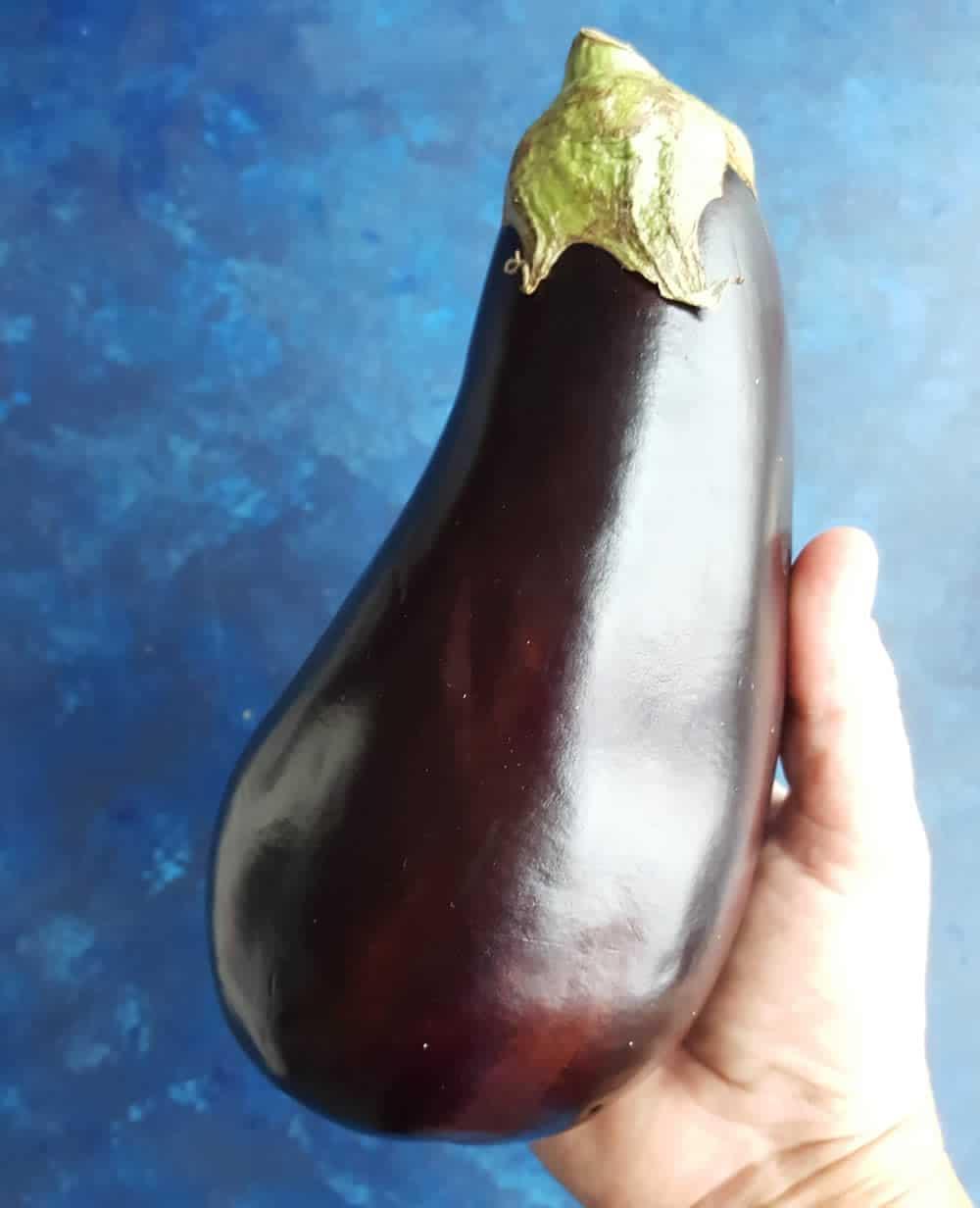 Holding an eggplant