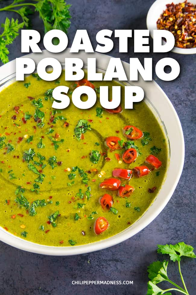 Roasted Poblano Soup - A recipe for earthy poblano peppers, roasted and peeled, simmered with onion, celery, carrots and spinach with the perfect seasoning blend, then pureed for a wonderfully creamy soup. Break out the bowls! #Soup #Poblanos
