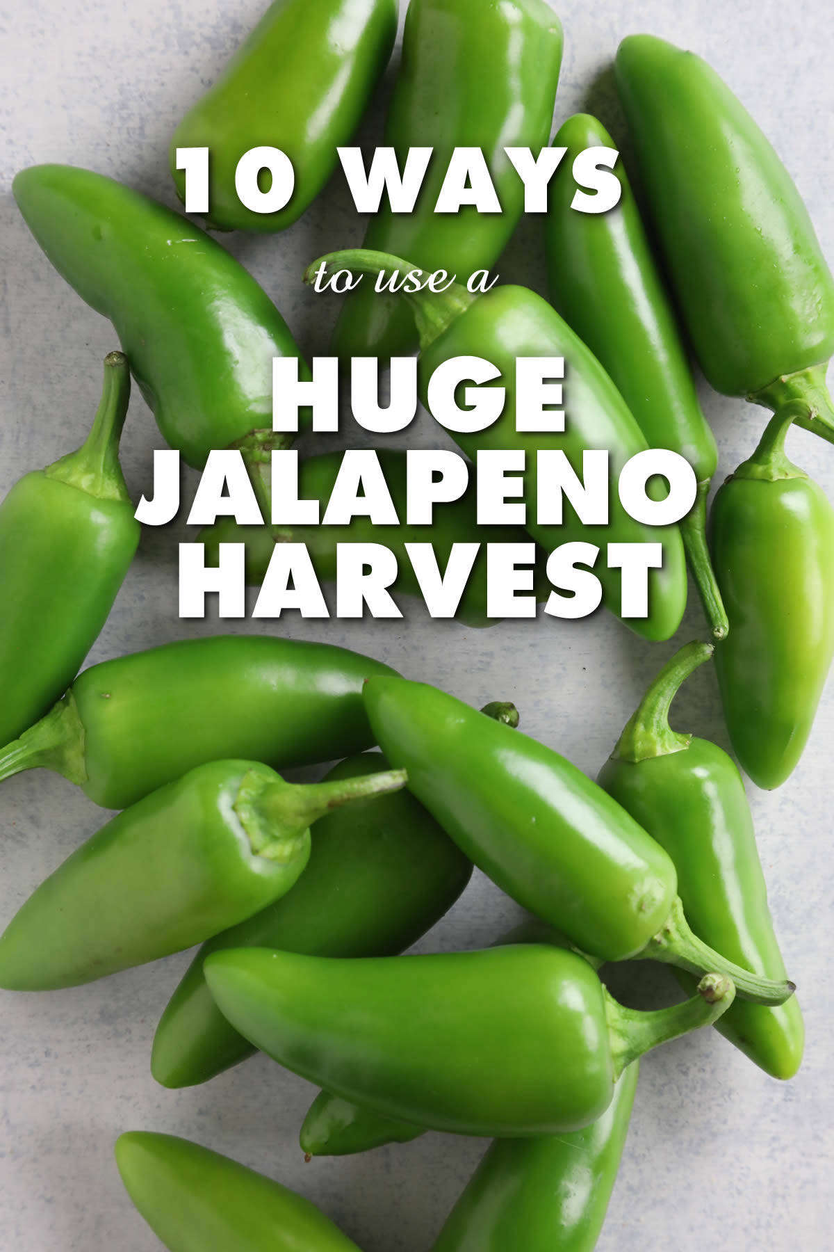10 Ways to Use a Huge Jalapeno Pepper Harvest