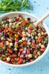 Mike's Zesty Three Bean Salad Recipe