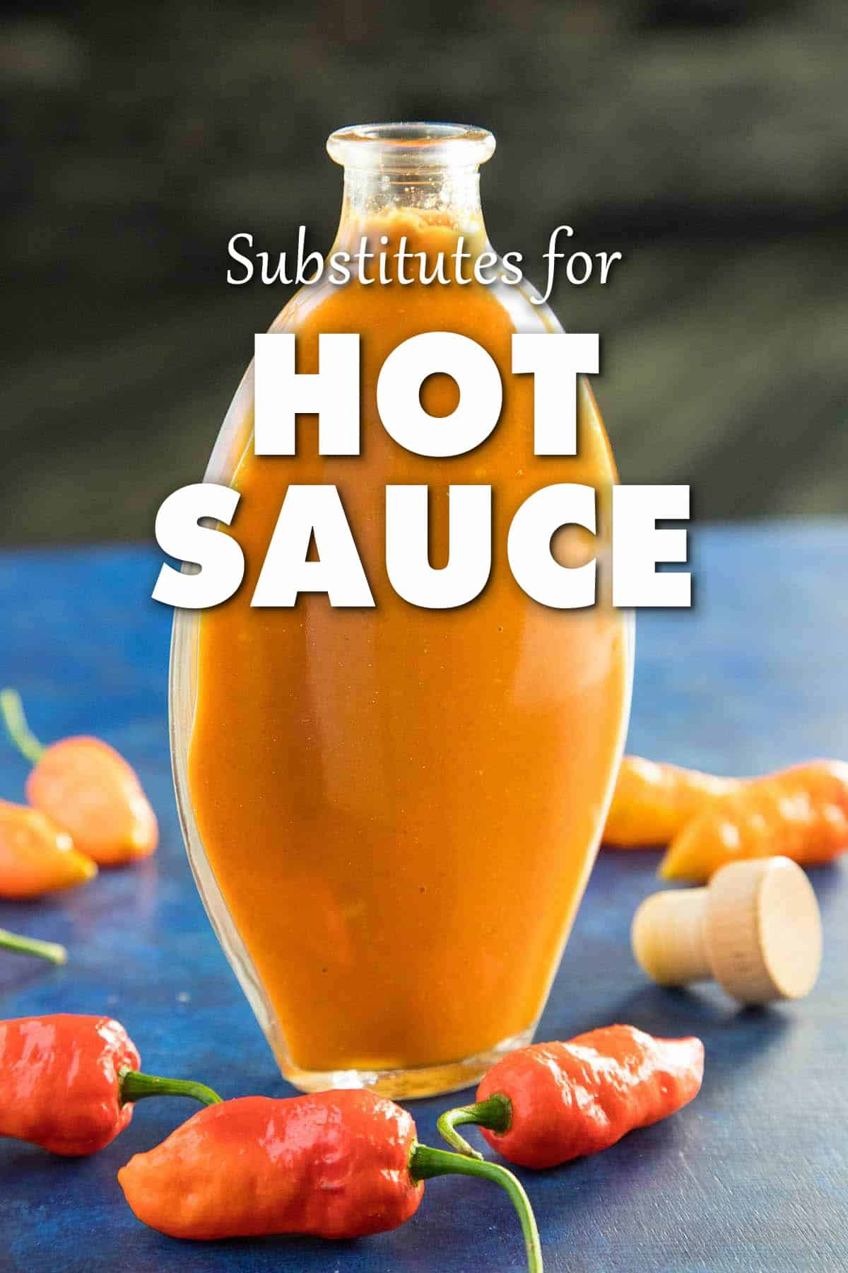 Hot Sauce Substitute – What Should I Use?
