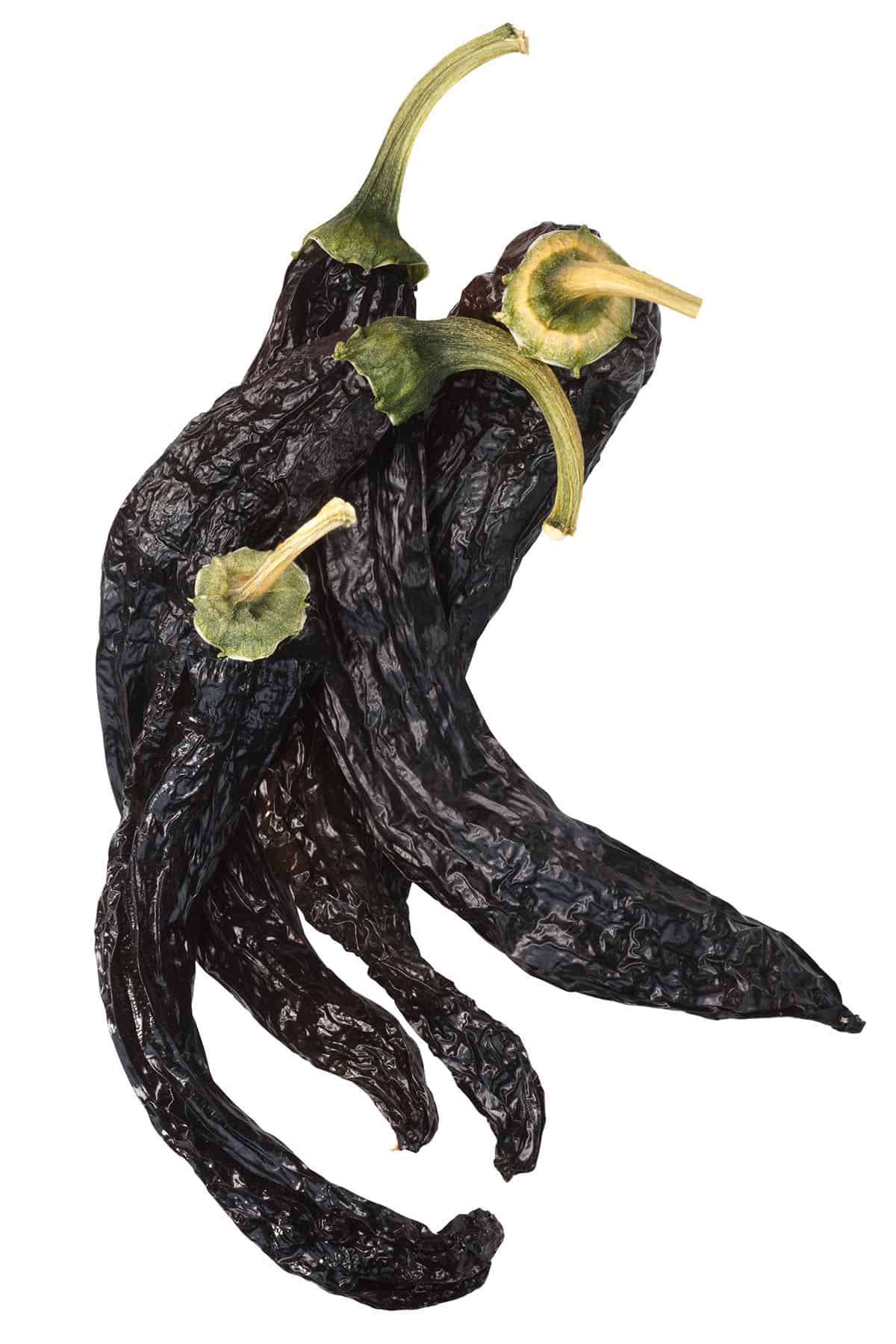 Pasilla Peppers: All About Them