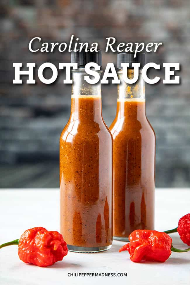Carolina Reaper Hot Sauce Recipe - This homemade Carolina Reaper hot sauce recipe is incredibly hot, made with roasted Carolina Reaper peppers, garlic, and onion. It doesn't get any hotter! #HotSauce #CarolinaReaper #Hottest