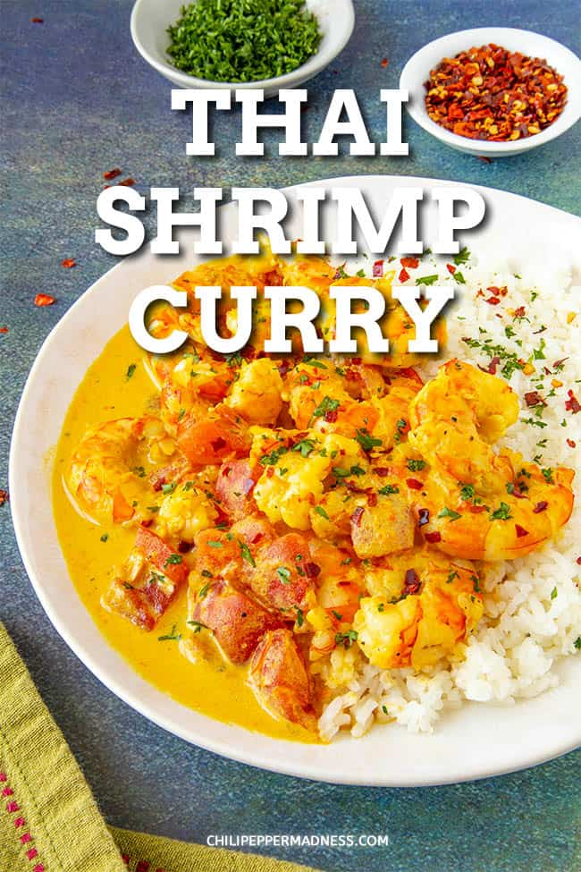 Thai Shrimp Curry Recipe - This Thai shrimp curry recipe is loaded with flavor, made with spicy curry paste, creamy coconut milk and succulent shrimp. Easy to make! Serve it with rice or noodles. It\'s a perfect weeknight meal. #Curry #CoconutCurry #EasyDinner