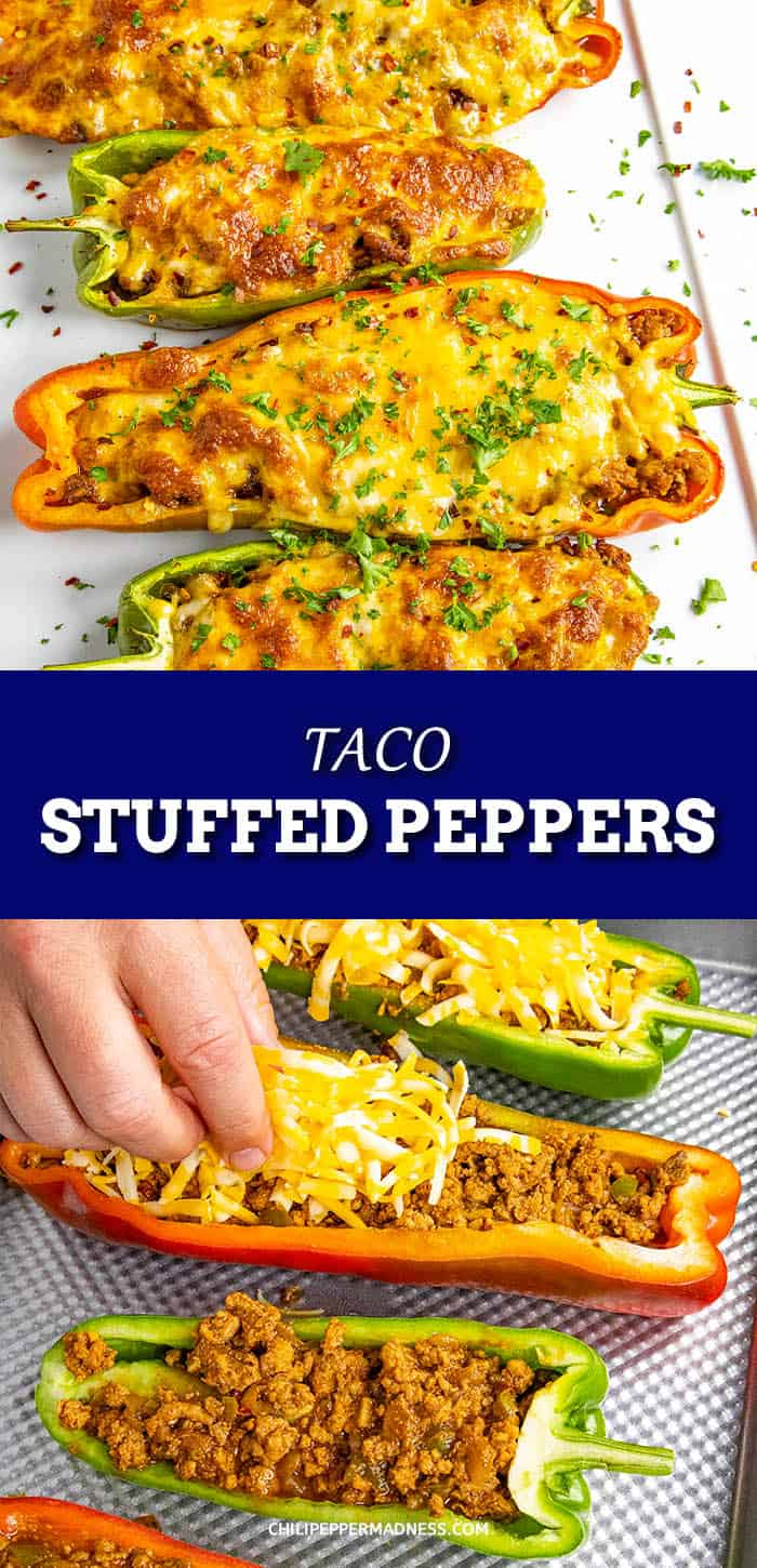 Taco Stuffed Peppers - This taco stuffed peppers recipe is loaded with flavor – large sweet bell peppers stuffed with taco seasoned ground meat then topped with melty cheese. Don\'t forget the hot sauce! #StuffedPeppers #EasyDinner