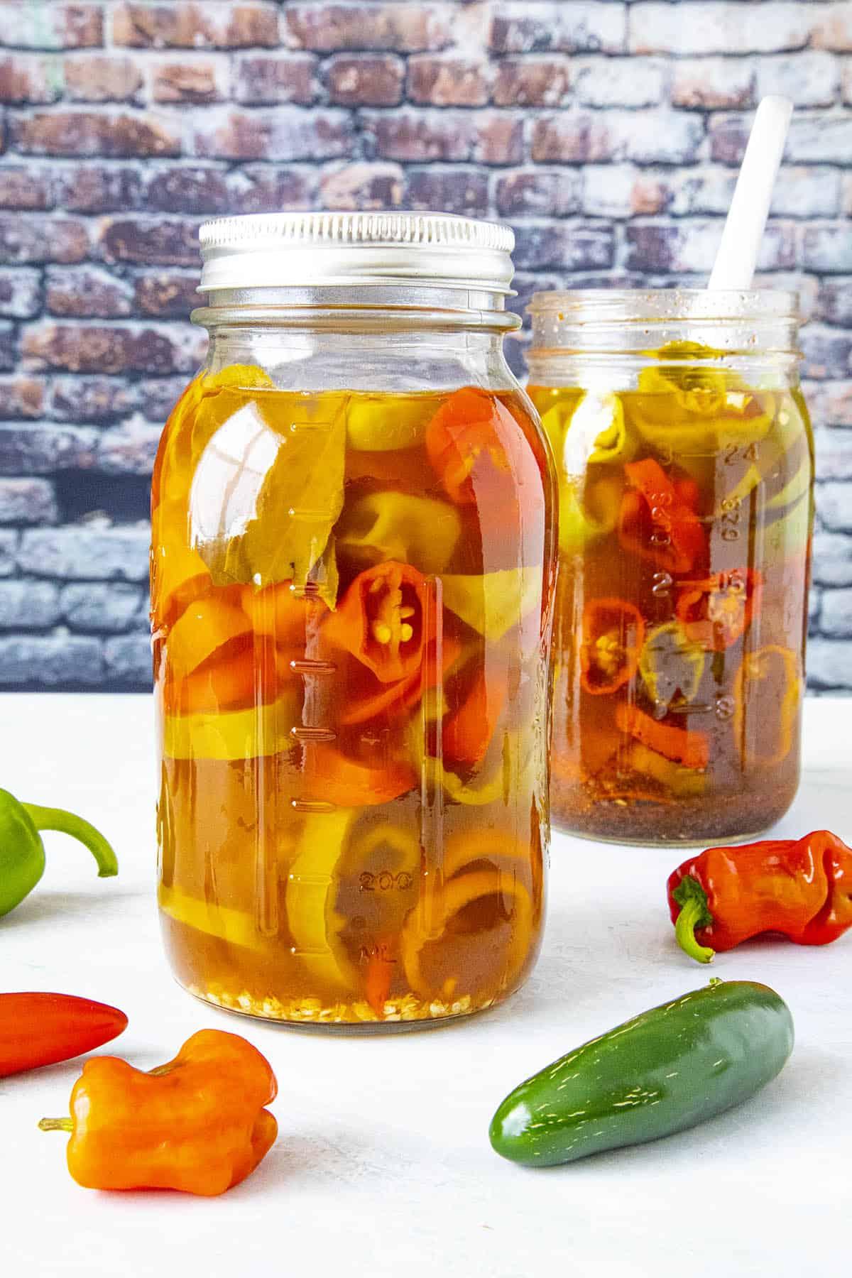 Spicy pickled peppers with Cajun seasoning in 2 jars